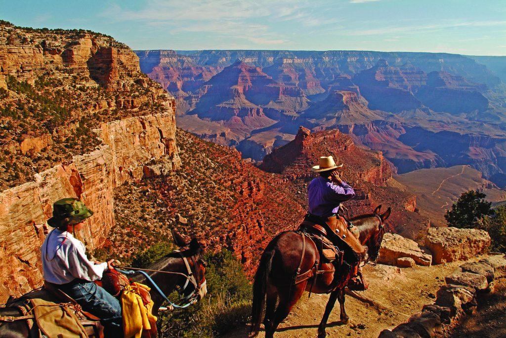 Grand_Canyon_caballos